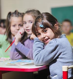 primary school teaching work